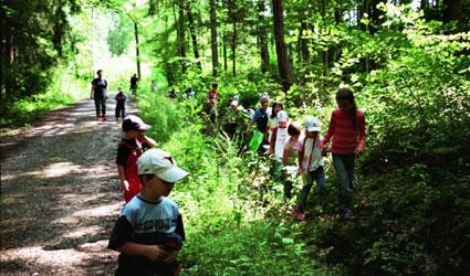 Kindergartenkinder laufen durch den Wald